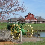 A day at the farm: Deanna Rose Children's Farmstead