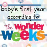Baby's First Year According to Wonder Weeks