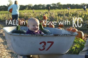 FALL in Love with KC: Your Guide to Festivals, Pumpkins and Apples