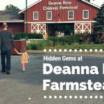 Hidden Gems at Deanna Rose Farmstead