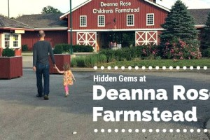 Hidden Gems at Deanna's Rose Farmstead