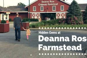 Hidden Gems at Deanna's Rose Farmstead