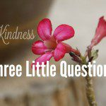 Three Little Questions