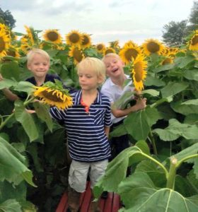 Tips for a Trip to Grinter Farms