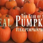 The Year of the Teal Pumpkin