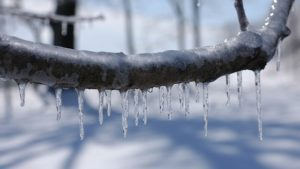 10 Steps To Preparing For A Kansas City Ice Storm
