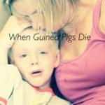 When Guinea Pigs Die