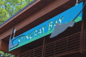 Stingray Bay | Kansas City Zoo