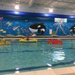 Goldfish Swim School: Learning to Swim Can be FUN