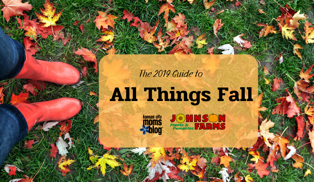 Guide to All Things Fall