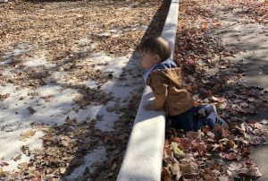 Toddler in leaves