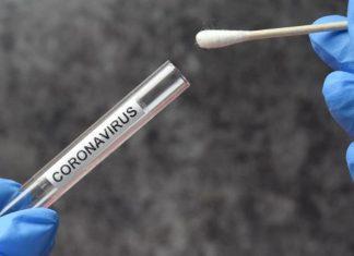 pic of coronavirus test