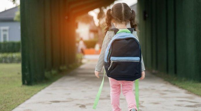 pic of little girl walking to school