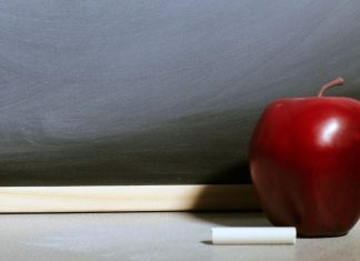 pic of apple, piece of chalk, and chalkboard