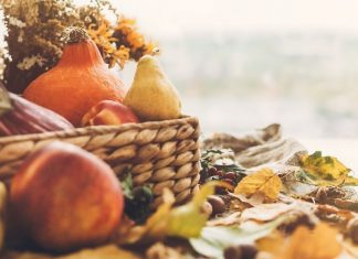 pic of Thanksgiving and fall decor