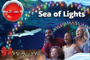 sea of lights at sea life Kansas city