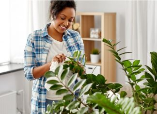 woman tending to her leafy houseplant