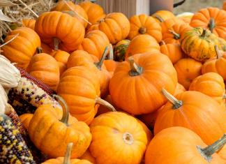 pumpkin patches in Kansas City